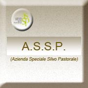 A.S.S.P.